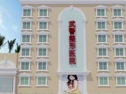 武警云南边防总队医院整形美容中心