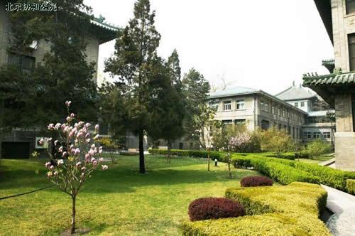 北京协和医院整形美容外科中心 医院环境相册