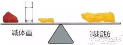 减肥不是减体重而是脂肪