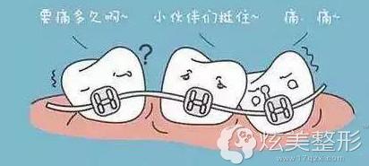 一定要坚持佩戴牙齿保持器