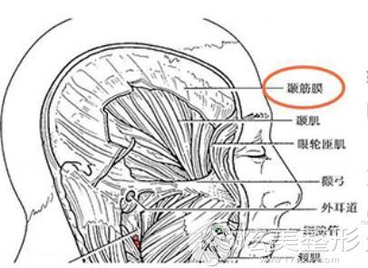 筋膜外衣技术做鼻综合