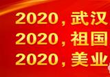 援助武汉疫情,沈阳百嘉丽3.5万只韩版KF94口罩捐献疫区