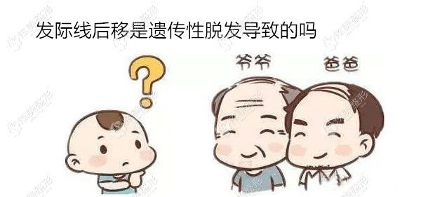 """发际线后移""""元凶""""是遗传性脱发,做M型种植后会全掉光吗"""