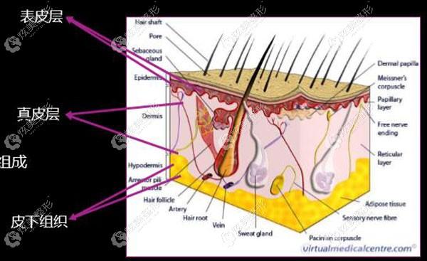 极速提拉治疗皮肤原理
