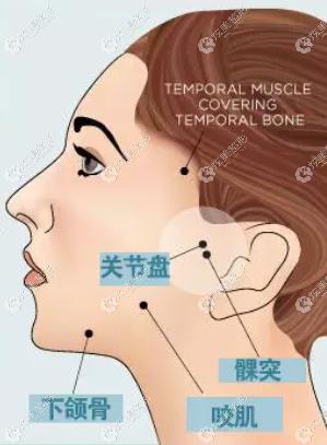 搞清楚颞颌关节紊乱的原因